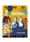 Brauermalz Sixpack (Frontal)